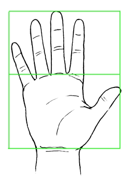 hand-proportions-01.jpg